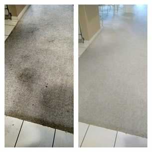 carpet stain removal gulf shores alabama